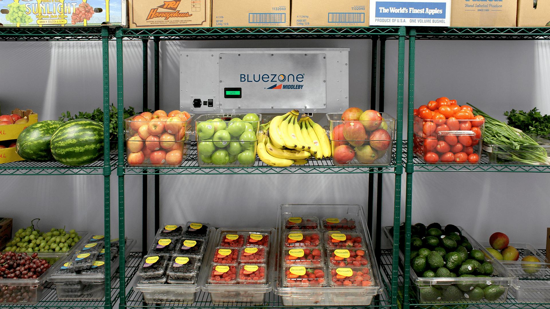 Bluezone Food Preservation